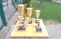 Więcej o: II Turniej Piłki Nożnej o Puchar Burmistrza Stawiszyna