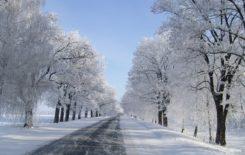 Więcej o: Informacja o zimowym utrzymaniu dróg na terenie Gminy i Miasta Stawiszyn 2016/2017