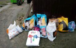 Więcej o: Informacja o przeprowadzonej zbiórce na Schronisko dla zwierząt w Kaliszu