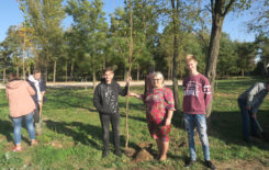 Więcej o: Sadzenie drzew miododajnych