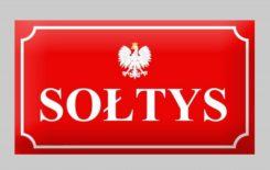 Więcej o: Ogłoszenie w sprawie wyborów sołtysów i rad sołeckich