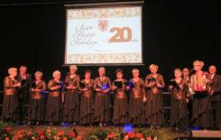 Więcej o: Święto Powiatu Kaliskiego oraz Jubileusz 20-lecia Powiatu Kaliskiego w Stawiszynie.