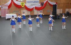 Więcej o: Grupa mażoretek z Gminy i Miasta Stawiszyn